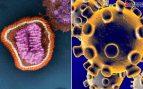 El coronavirus y la gripe desatan una guerra en Twitter: