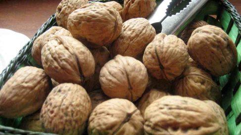 Comer nueces prolonga la vida