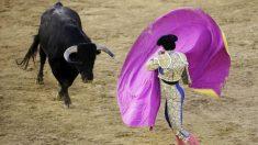 Las corridas de toros son muy esperadas en época de Fallas en Valencia