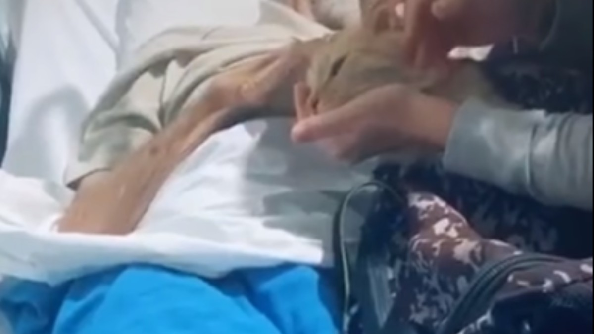 Facebook: Un hombre a punto de morir se despide de su gato en el hospital