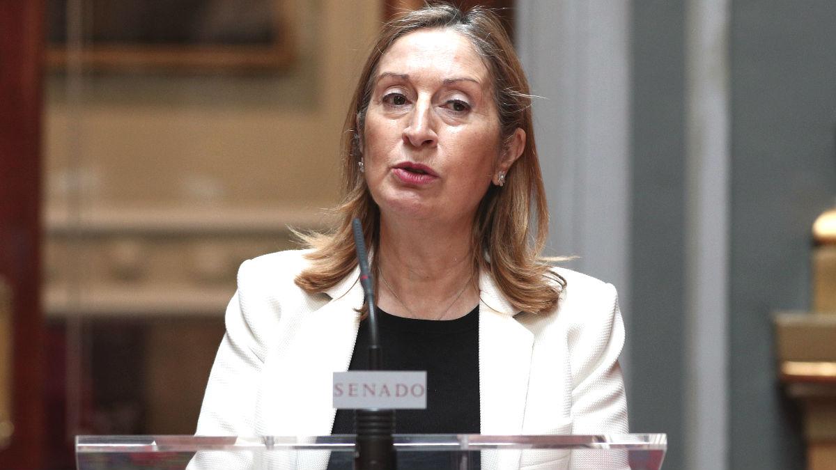 La diputada nacional, Ana Pastor.