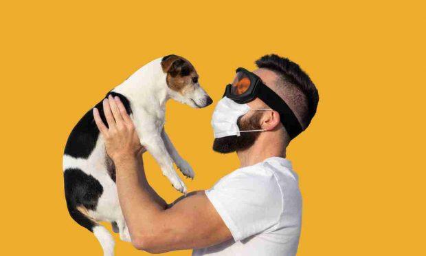 El coronavirus y las mascotas: ¿pueden sufrir episodios de ansiedad?