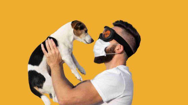 El coronavirus y las mascotas
