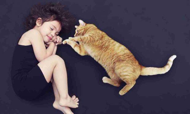 Los gatos y los niños