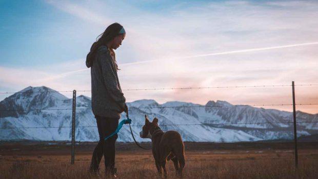 Con tu perro a la montaña