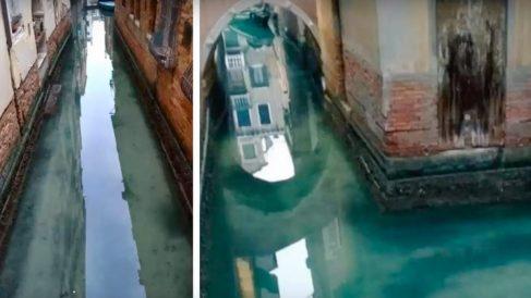 Así de transparantes están las aguas de Venecia por la falta de turistas