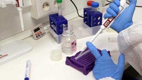 Málaga.-Coronavirus.-UMA ofrece a Gobierno infraestructura y personal para realizar prueba de diagnóstico de coronavirus