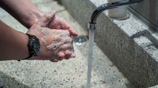 Chinos mascotas, lavarse las manos