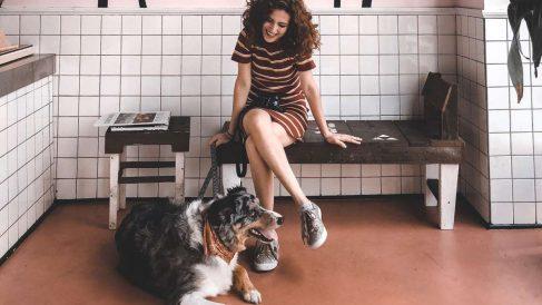 Los perros abandonados de Madrid podrán ser paseados por voluntarios