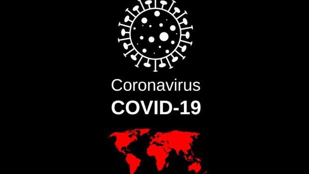Cuidado perros en la cuarentena del coronavirus