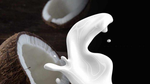 Crema de coliflor asada con leche de coco