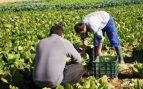 Andalucía transportará a los trabajadores del campo en autobuses escolares