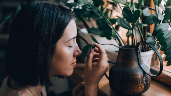 coronavirus te quita el olfato