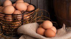 Pasos para saber si un huevo está malo al instante
