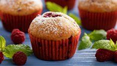 Muffins de avena con frutos rojos