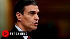 Rueda de prensa de Pedro Sánchez, streaming en directo