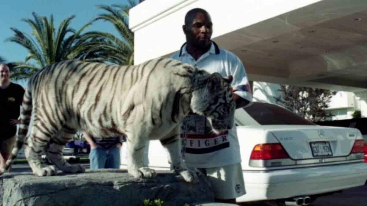 Mike Tyson y su tigre Kenia. (Getty)