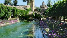 Los jardines del Alcázar de Córdoba abren sus puertas de forma gratuita