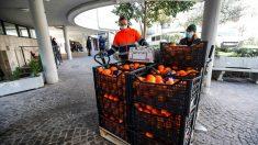 Operarios protegidos por mascarillas manipulan un cargamento de fruta en un mercado de Roma (Foto: EFE).