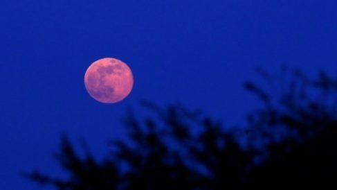 Súper Luna Rosa de abril 2020