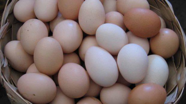 Lavar o no los huevos