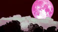 La superluna rosa es uno de los momentos más mágicos del año