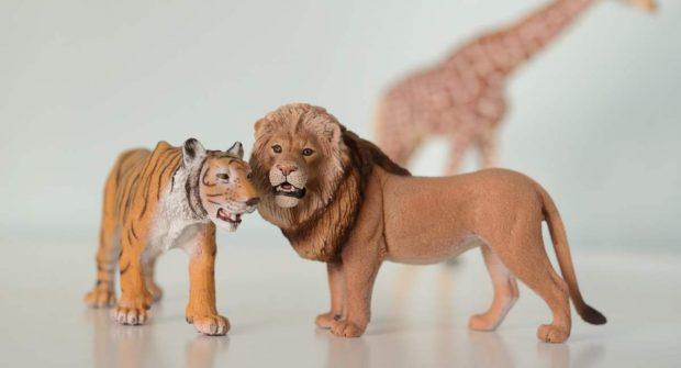 Tigres y leones