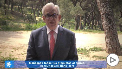 Sánchez Martos: «Hay que cuidar la alimentación durante el confinamiento»