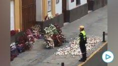 Sevilla se llena de flores por Semana Santa.