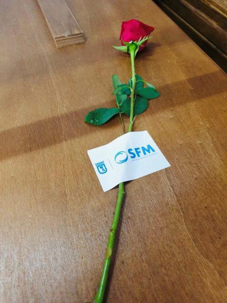 Servicios Funerarios de Madrid coloca una rosa sobre cada uno de sus féretros para acompañar al fallecido. Foto: EP