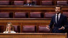 Pablo Casado, presidente del PP, en el Congreso.