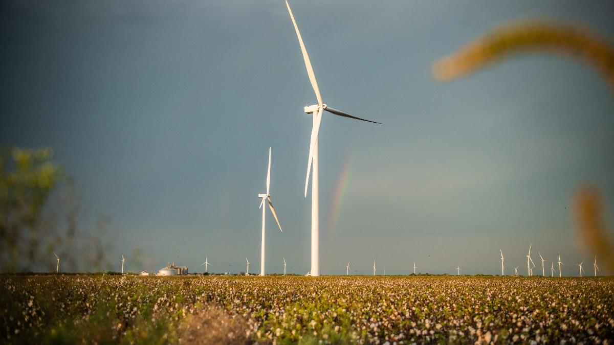 Parque eólico de Iberdrola de Karankawa en Estados Unidos.