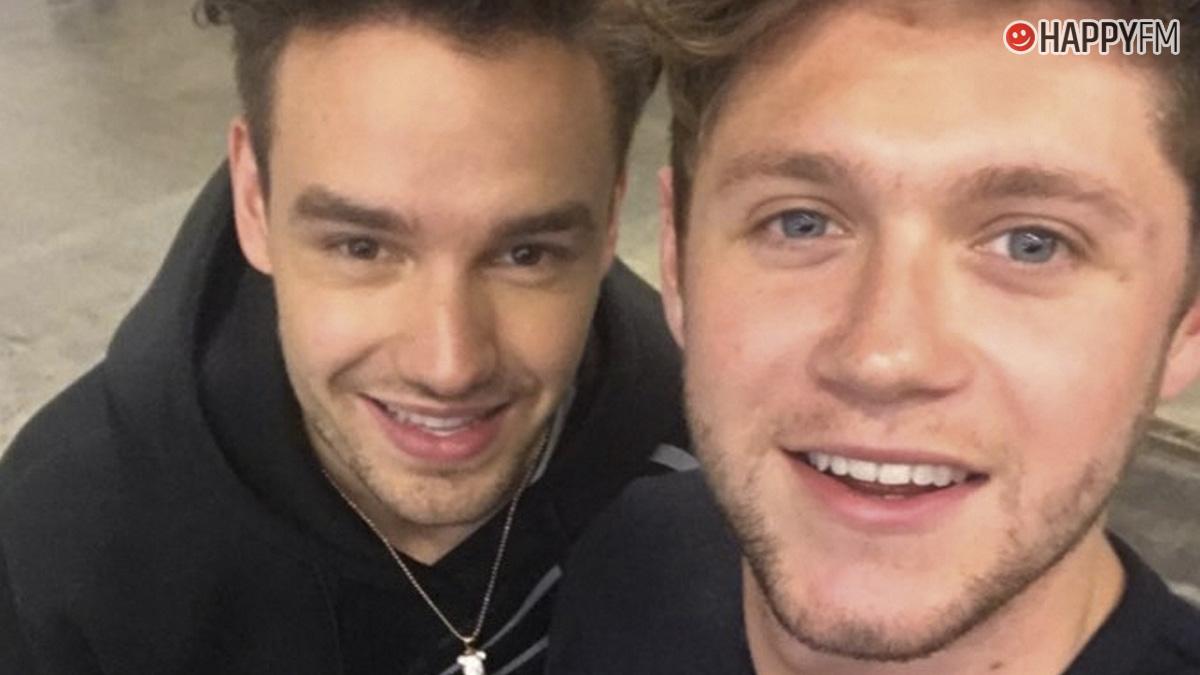 Liam Payne y Niall Horan
