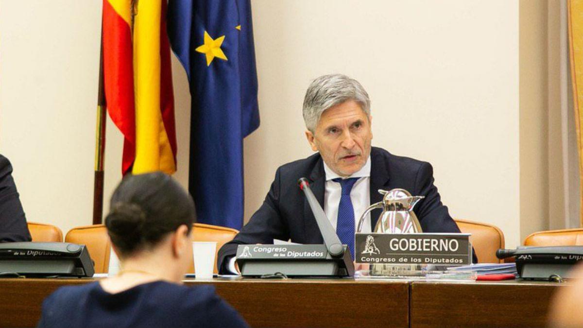 El ministro del Interior, Fernando Grande-Marlaska, (Foto: Congreso)