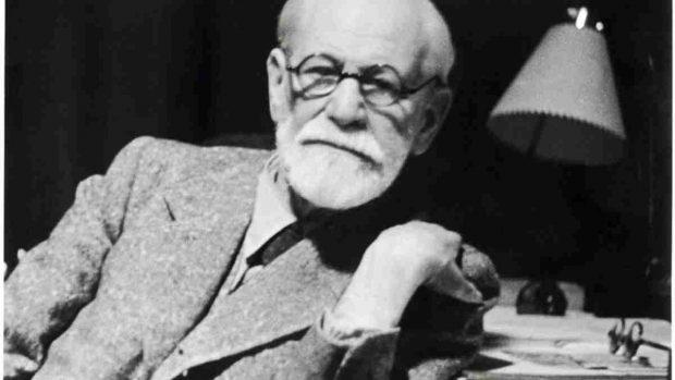 Freud animales