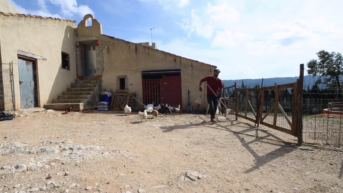 El 'Santuario Compasión Animal' donde quieren llevar al ternero Pepe.