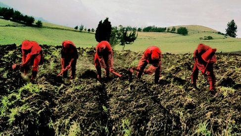 Los agricultores sufrirán a partir de 2021 un recorte en las ayudas de la PAC.