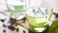 El té verde es una de las infusiones más beneficiosas con tu organismo que puedes consumir