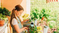 Distintos juegos y actividades para que los niños hagan en el balcón