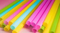 Distintas ideas de manualidades que podemos hacer con pajitas de plástico