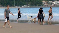Varias persona caminan y corren con perros en la playa de La Concha en el día en que el Gobierno permite salir a hacer deporte de forma individual y pasear con otra persona con la que se conviva, a determinadas horas, según la edad, y hasta un kilómetro de distancia del domicilio, en San Sebastián. Foto: EP
