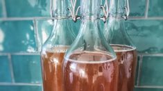 Descubre la bebida con extractos vegetales que puede erradicar la resaca