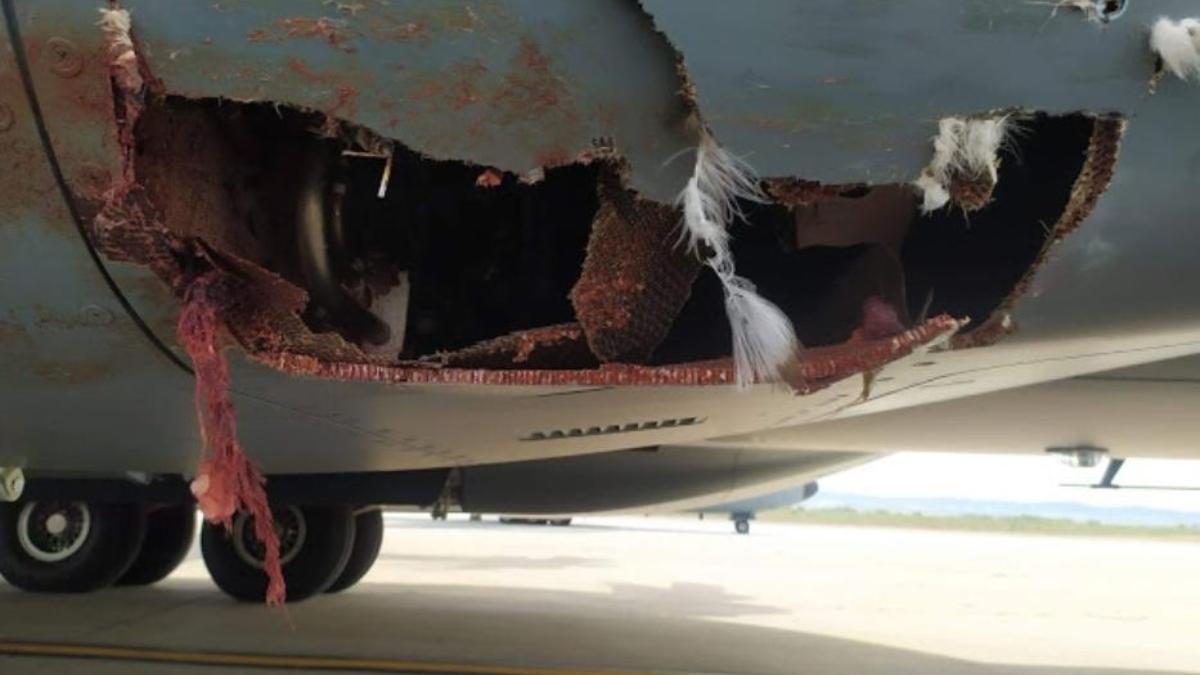 Agujero en el fuselaje del avión A400M del Ejército del Aire español.