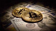 interior-bitcoin