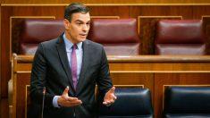 Pedro Sánchez en sesión de control al Gobierno en el Congreso. (Foto: Congreso)