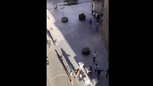 Pelea granado por los vecinos de Manresa