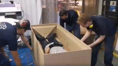 Facebook: Una empresa colombiana crea una cama que se convierte en ataúd para el coronavirus