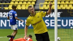 Haaland celebra su gol al Schalke. (AFP)