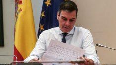 Pedro Sánchez en reunión telemática. (Foto: La Moncloa)