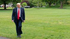 El presidente de EEUU, Donald Trump. Foto: EP